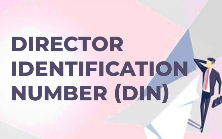 Provisions in Respect of Director Identification Number (DIN).