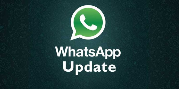 WhatsApp rolling out the ShareChat player update, Now you can Watch ShareChat Videos Picture-in-Picture Mode