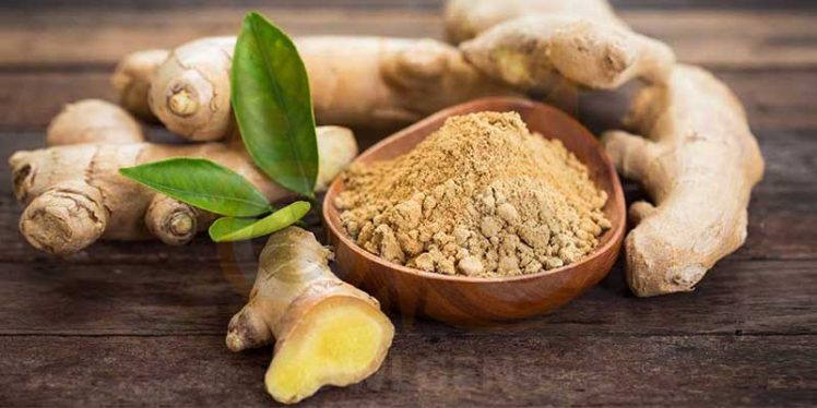 Scientifically Proven Health Benefits of Ginger